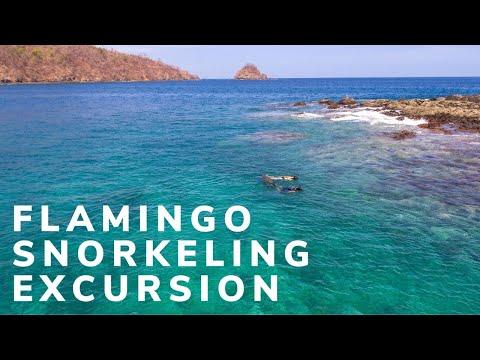 Playa Flamingo Snorkeling Excursion, Costa Rica