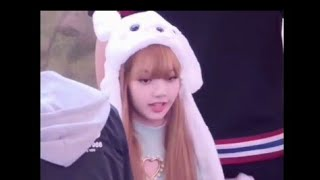 LISA -scars to your beautiful