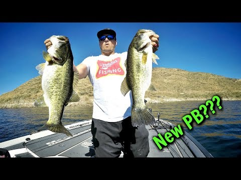 Catching GIANT California Bass!!! Ft. BIG BASS DREAMS