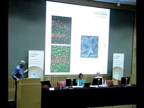Action for M.E. Severe M.E. Symposium - Intro and Prof Hugh Perry presentation