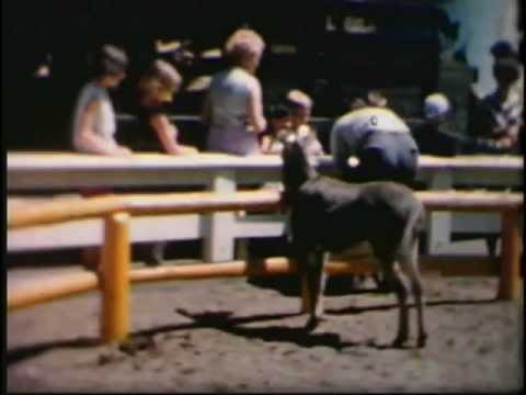 Johnston Old Home Movies - Reel #1