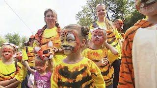 Тысячи людей со всей России приехали во Владивосток, чтобы пройти ярким маршем в День тигра.
