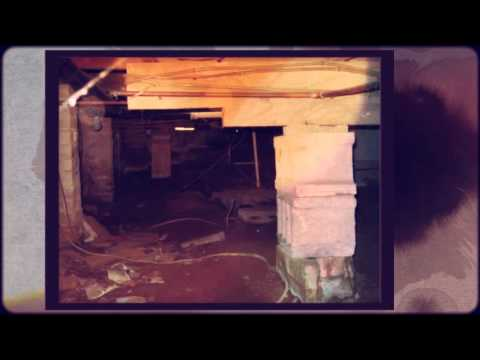 Rochester Home Inspector Tells About Mold 585-654-7294
