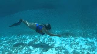 Karol Meyer * Freediving adventure at Bachelor beach - Bonaire