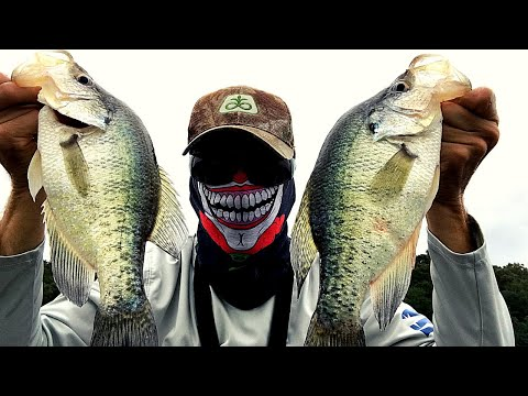 FALL CRAPPIE FISHING (2020) How To Locate And Catch Fall Crappie