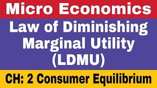 6 Law of Diminishing Marginal Utility LDMU  Micro Economics