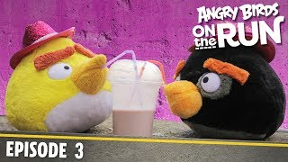 Angry Birds on The Run | Baby's Shaky Ride - S1 Ep3