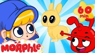 Morphle's Cute Bunny - Mila And Morphle   Cartoons For Kids   Morphle TV