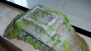Мои красноухие черепахи, уборка. Моё содержание черепах.