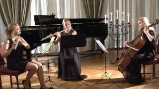 Joseph Haydn London trio Hob.IV:1  (Allegro moderato)