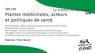 Plantes médicinales, acteurs et politiques de santé