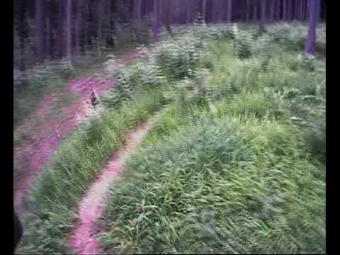Altaussee - Peters Wellen-Trail
