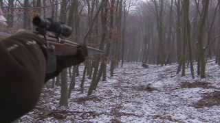 Franz-Albrecht Oettingen-Spielberg Wild Boar hunting