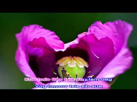 paj yeeb ntsha instrumental HD thumbnail