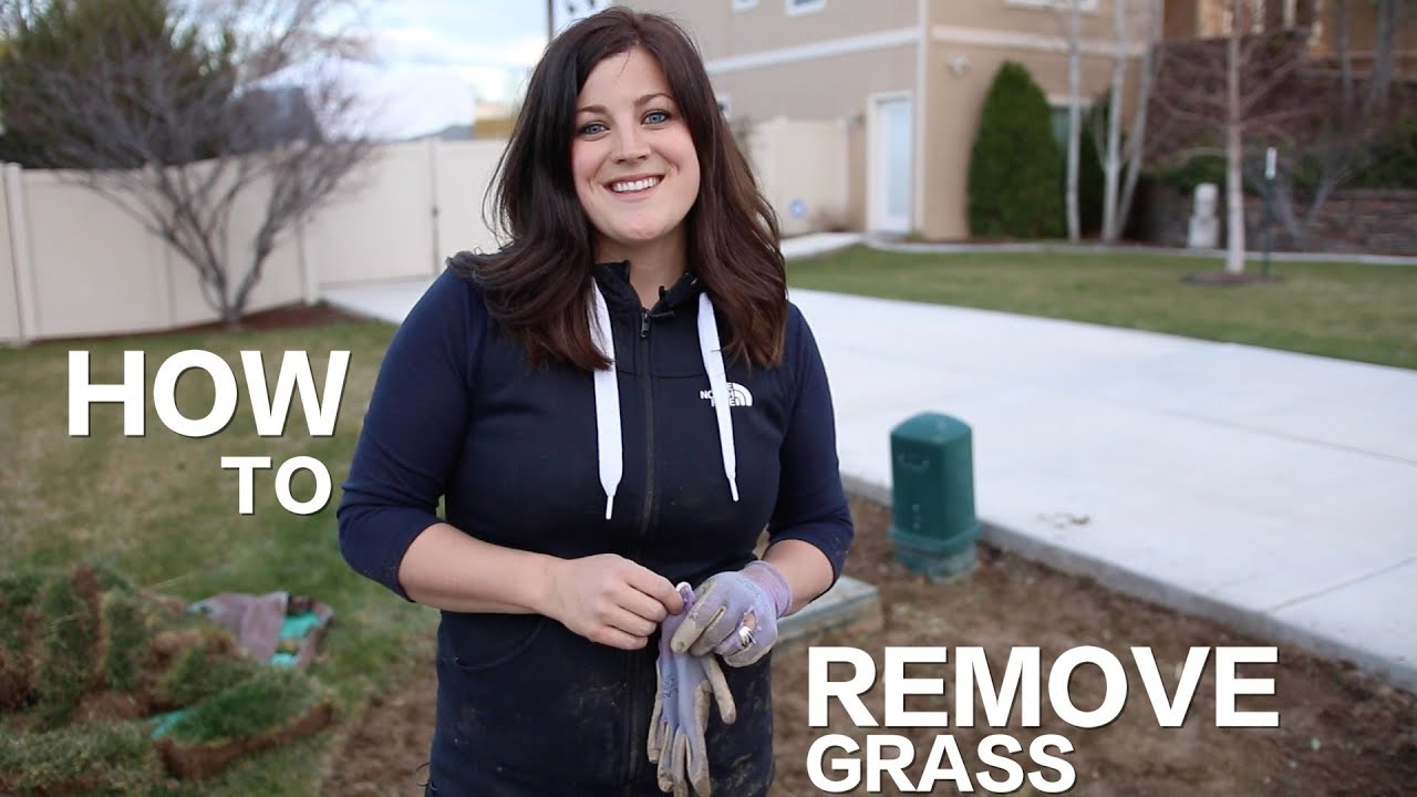How To Remove Grass // Garden Answer   YouTube