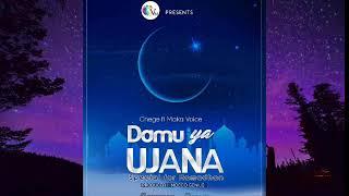 Chege ft Maka voice -Damu  ya  ujana(Original Version)