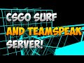 CSGO: Surf Server & Teamspeak for Subscribers!