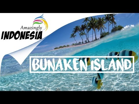 Amazingly Indonesia | Best Spot Diving in North Sulawesi  (Bunaken Island)