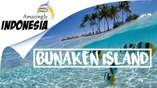 Download Video Amazingly Indonesia | Best Spot Diving in North Sulawesi  (Bunaken Island) MP3 3GP MP4