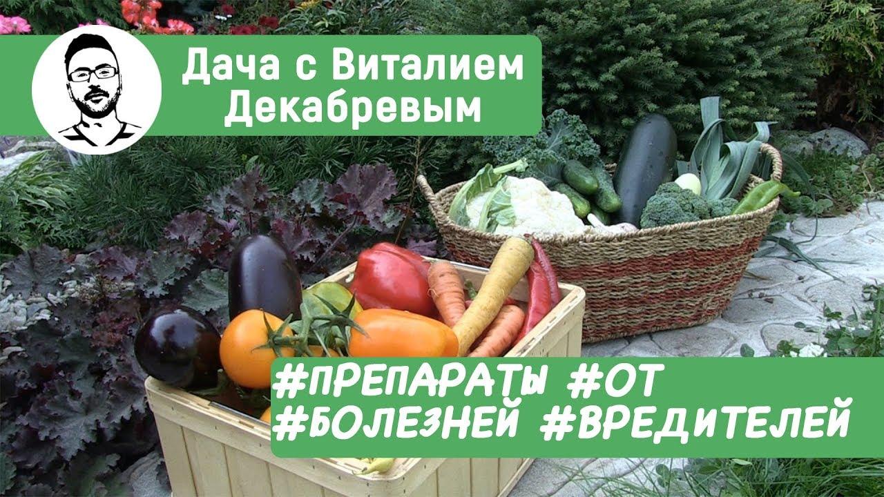 биопрепараты от вредителей сада и огорода