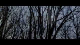 Yosi Horikawa - Stars (Official Video) directed by GAREN