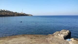 """AKARCA - Seferihisar'ın en güzel mevkii ve """"PIRIL PIRIL"""" deniz.."""
