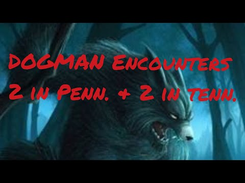 DOGMAN Encounters 2 in Penn. & 2 in Tenn.