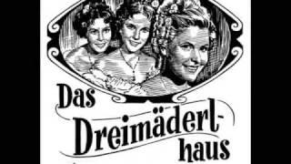 Rainhard Fendrich - Ich bin ein Negerant Madame