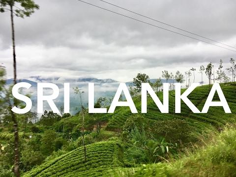 Backpacking Sri Lanka. Crazy train & bus rides, Ceylon tea plantations & safari tours.