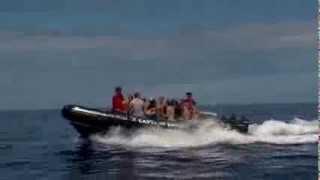 Captain Zodiac Adventure Rafting