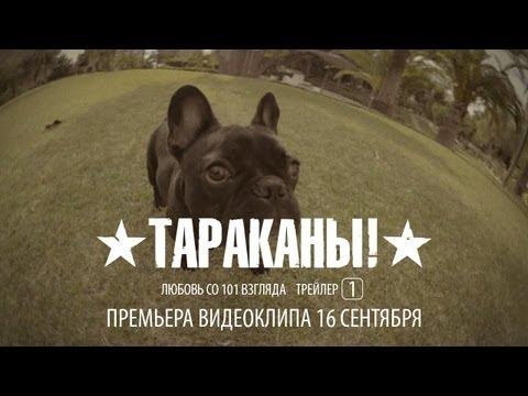 Тараканы-Любовь со 101 взгляда(cover).