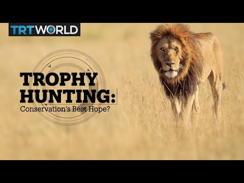 Trophy Hunting: Conservation's Best Hope?