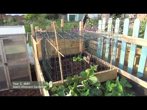 Sean's Allotment Garden #61: Trip to Amsterdam | May 2014