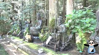 【京都】入山から醍醐山の自然風景、山道【上醍醐】