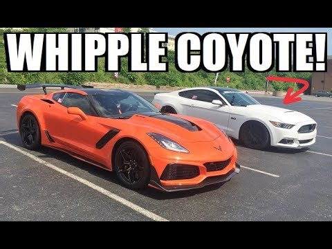 2019 ZR1 Gets CALLED OUT By a Whipple 5.0 Mustang!!! This Should be Good...