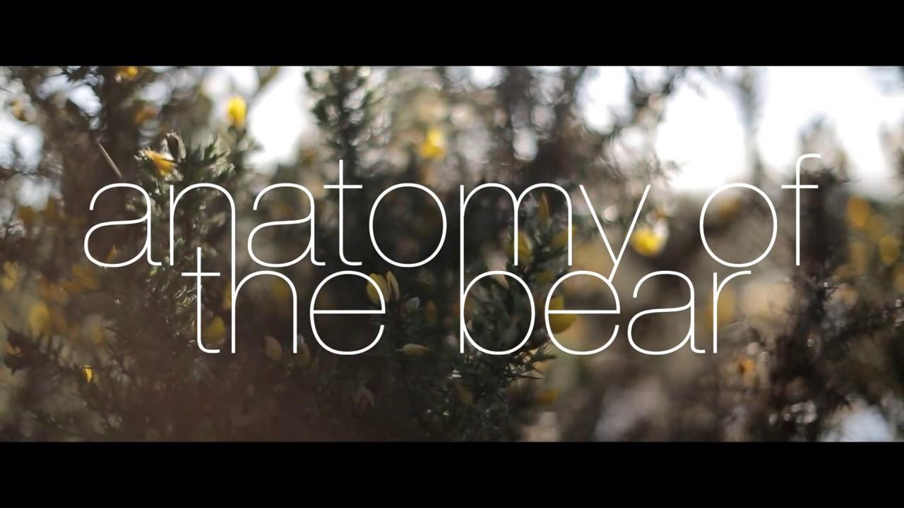 Anatomy of the Bear - YouTube