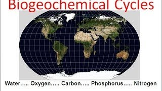 Biogeochemical Cycles Honors Biology Updated