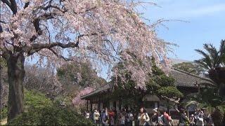 東京・浅草の仲見世の西側にある浅草寺の本坊の伝法院が特別公開され、...