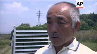 Japan farmers plant, seek radiation-free rice