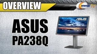 Newegg TV: ASUS PA Series PA238Q LED Backlight Widescreen LCD Monitor Overview