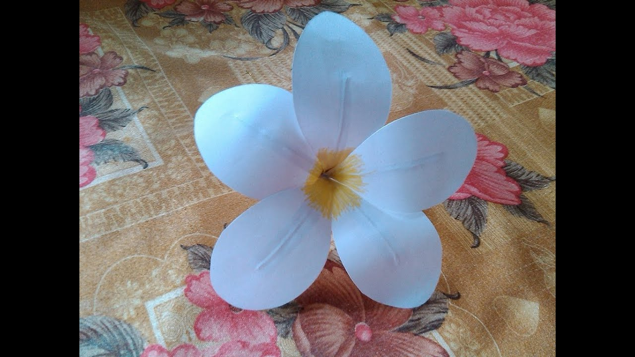 Paper Crafts Flower Frangipani Plumeria Eezhachempakam Paper Flower