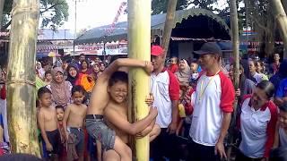 #FUNNY | MOMENT LUCU LOMBA PANJAT POHON PISANG