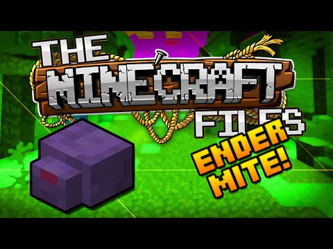 The Minecraft Files #395 - ENDERMITE HUNTING!