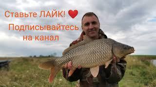 Рыбалка в деревне на мини пруду 15 августа 2020 г