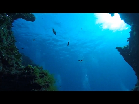 Scuba Diving at Kalamitsi with Friends Summer 2016