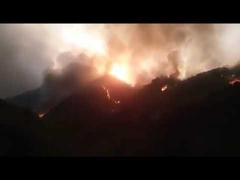 2019年9月29日, 江西庐山森林大火,已烧三天,没有一家媒体报道 !