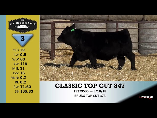 Classic Angus Ranch Lot 3