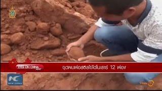 EYES ON CHINA : จีนขุดพบฟอสซิลไข่ไดโนเสาร์ 12 ฟอง
