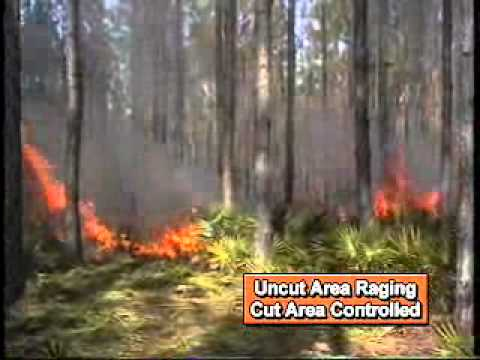 Kut  Kwick, Corporation: Controlled Burn, fighting fire with the BrushMaster