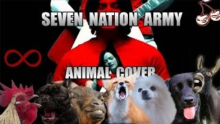Baixar The White Stripes - Seven Nation Army (Animal Cover)